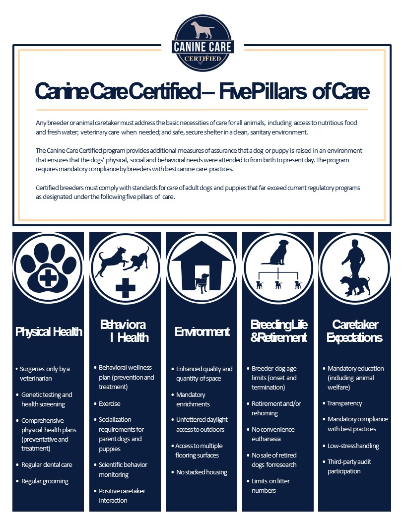 CCC - Five Pillars of Care.jpg