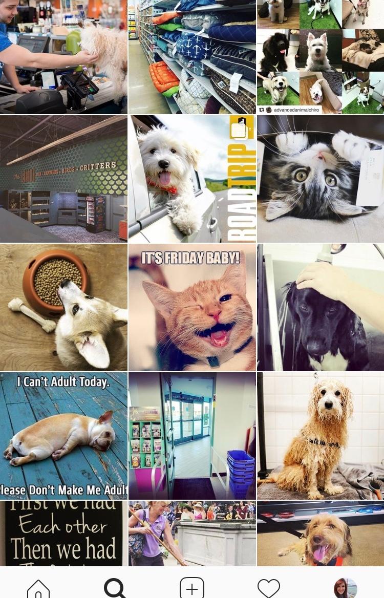 Instagram-Example-1