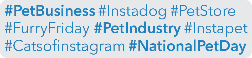 pet-business-marketing-guide-social-media-hashtags.png