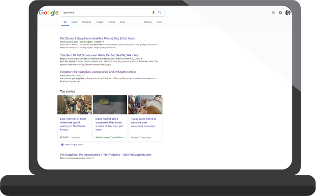pet-business-marketing-seo-google.png