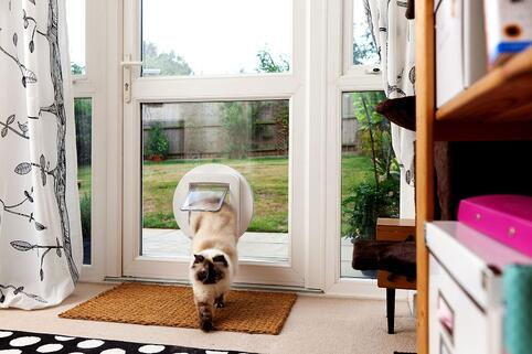 sureflap-pet-door-pet-tech.jpg